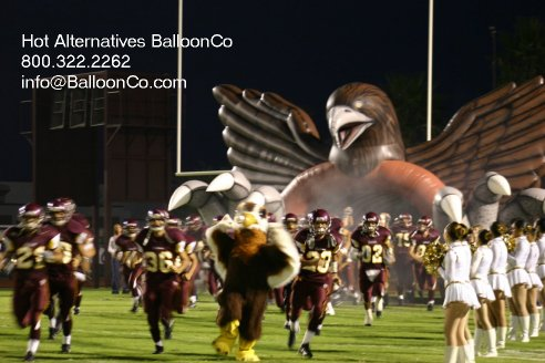 Los Fresnos TX Falcons Football Entry with Mascot and Team